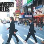 strawyberry-fields-121712
