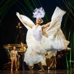 peacock-dance