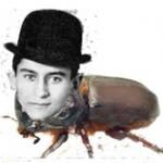 Kafka_Beetle