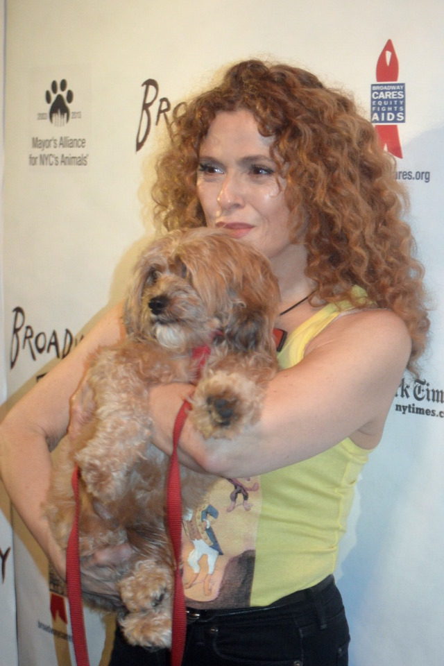 Broadway Barks 18th Annual in Shubert Alley