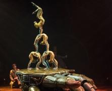 'KURIOS' Cracks Open a Cavalcade of Creativity