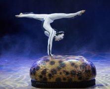 Great Eggspectations: Cirque Du Soleil's Ovo